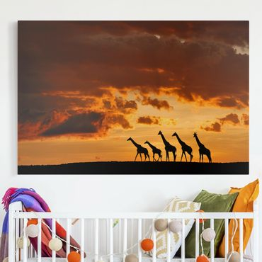 Leinwandbild - Fünf Giraffen - Quer 3:2