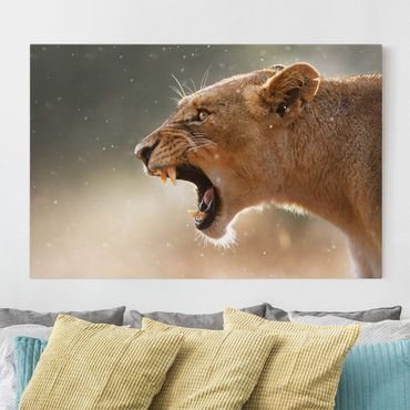 Leinwandbild - Löwin auf der Jagd - Quer 3:2