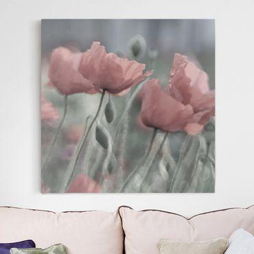 Leinwandbild - Malerische Mohnblumen - Quadrat 1:1