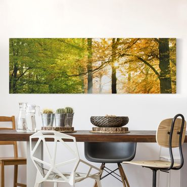 Leinwandbild - Morning Light - Panorama Quer