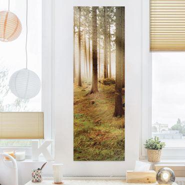 Leinwandbild - No.CA48 Morning Forest - Panorama Hoch