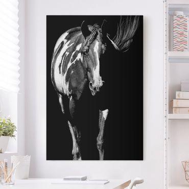 Leinwandbild - Pferd vor Schwarz - Hochformat 3:2