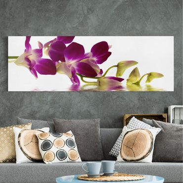 Leinwandbild - Pink Orchid Waters - Panorama Quer