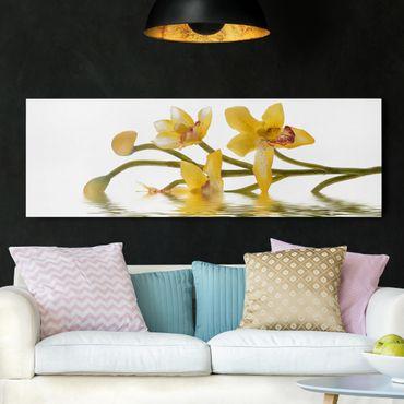 Leinwandbild - Saffron Orchid Waters - Panorama Quer