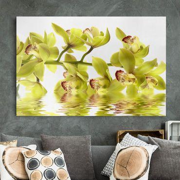 Leinwandbild - Splendid Orchid Waters - Quer 3:2