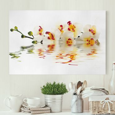 Leinwandbild - Vivid Orchid Waters - Quer 3:2
