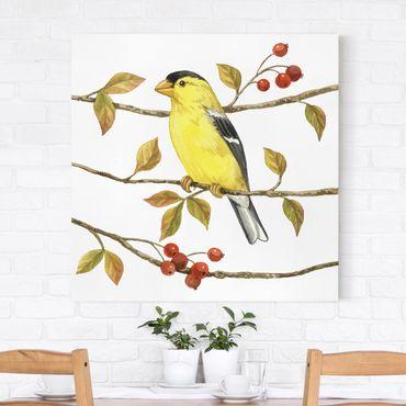 Leinwandbild - Vögel und Beeren - Goldzeisig - Quadrat 1:1