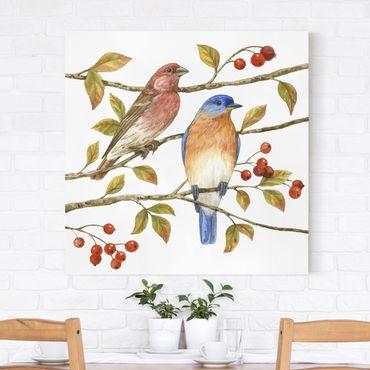 Leinwandbild - Vögel und Beeren - Hüttensänger - Quadrat 1:1