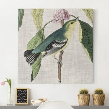 Leinwandbild - Vogel auf Leinen Rosa I - Quadrat 1:1
