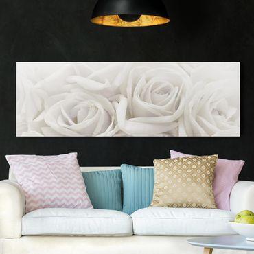 Leinwandbild Weiße Rosen - Panoramabild Quer
