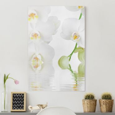 Leinwandbild - Wellness Orchidee - Weiße Orchidee - Hoch 2:3