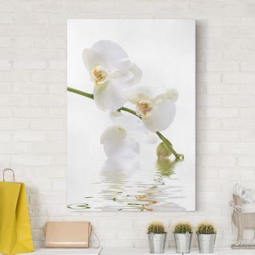 Leinwandbild - White Orchid Waters - Hoch 2:3