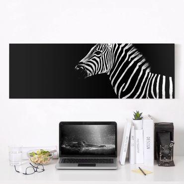 Leinwandbild Schwarz-Weiß - Zebra Safari Art - Panoramabild Quer