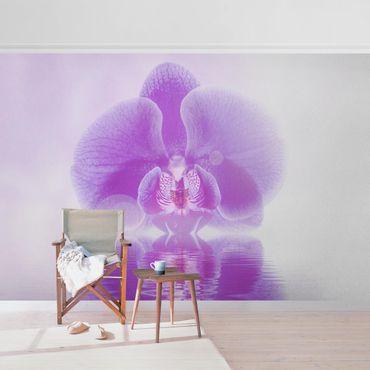 Metallic Tapete  - Lila Orchidee auf Wasser