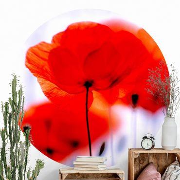Runde Tapete selbstklebend - Magic Poppies