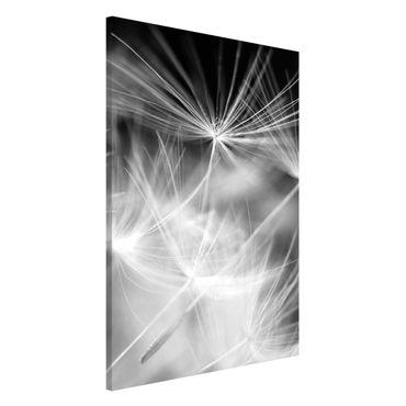 Magnettafel - Bewegte Pusteblumen Nahaufnahme auf schwarzem Hintergrund - Memoboard Hoch