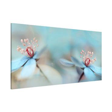 Magnettafel - Blüten in Hellblau - Memoboard Panorama Quer