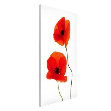 Magnettafel - Charming Poppies - Memoboard Hoch