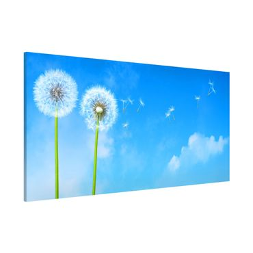 Magnettafel - Flying Seeds - Memoboard Panorama Quer