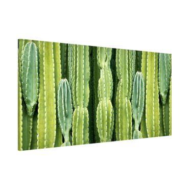Magnettafel - Kaktus Wand - Memoboard Panorama Querformat