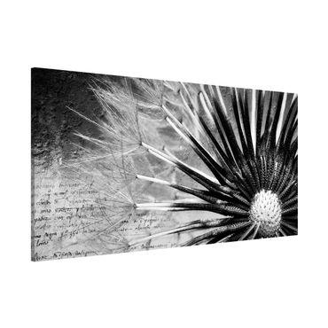 Magnettafel - Pusteblume Schwarz & Weiß - Memoboard Panorama Quer