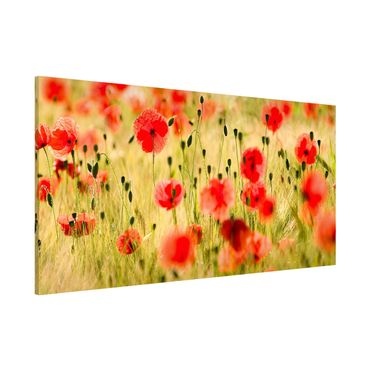 Magnettafel - Summer Poppies - Memoboard Panorama Quer