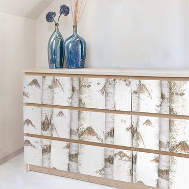 Möbelfolie Birke - Birkenwand Holzfolie- Folie für Möbel selbstklebend