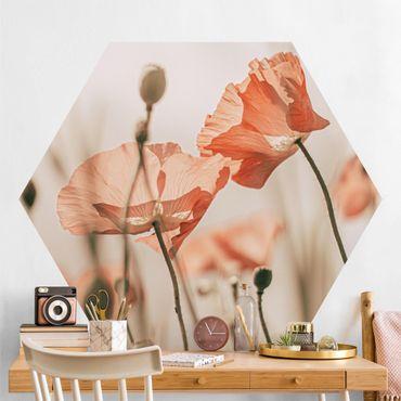 Hexagon Mustertapete selbstklebend - Mohnblüten im Sommerwind