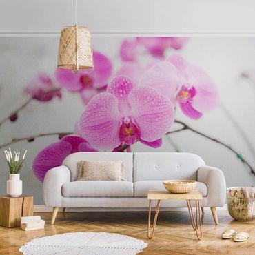 Metallic Tapete  - Nahaufnahme Orchidee