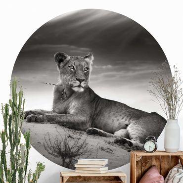 Runde Tapete selbstklebend - Resting Lion