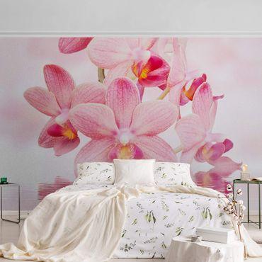Metallic Tapete  - Rosa Orchideen auf Wasser