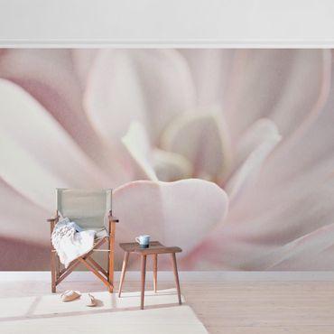 Metallic Tapete  - Rosane Sukkulentenblüte