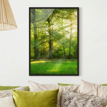Bild mit Rahmen - Spaziergang im Wald - Hochformat