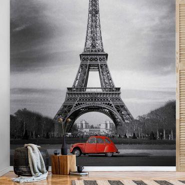 Metallic Tapete  - Spot on Paris
