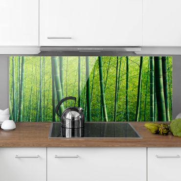 Spritzschutz Glas - Bambuswald - Panorama Quer