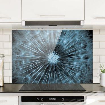 Spritzschutz Glas - Blau getönte Pusteblume - Querformat 2:3