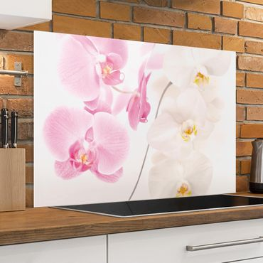 Spritzschutz Glas - Delicate Orchids - Quer 3:2