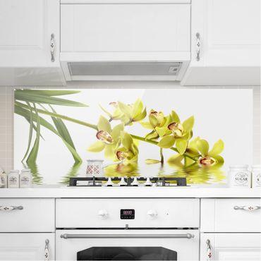 Spritzschutz Glas - Elegant Orchid Waters - Panorama Quer