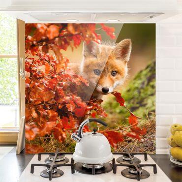 Spritzschutz Glas - Fuchs im Herbst - Quadrat 1:1