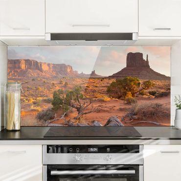 Spritzschutz Glas - Monument Valley Navajo Tribal Park Arizona - Querformat 1:2