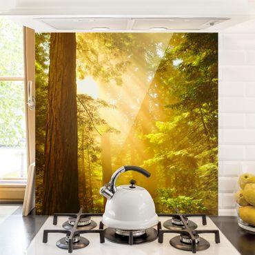 Spritzschutz Glas - Morgengold - Quadrat 1:1