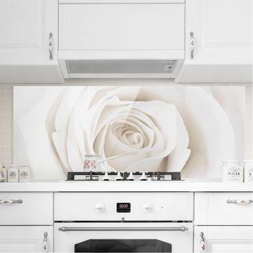 Spritzschutz Glas - Pretty White Rose - Panorama Quer