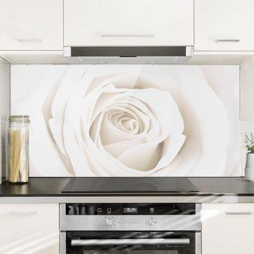Spritzschutz Glas - Pretty White Rose - Quer 2:1