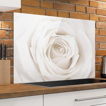Spritzschutz Glas - Pretty White Rose - Quer 3:2