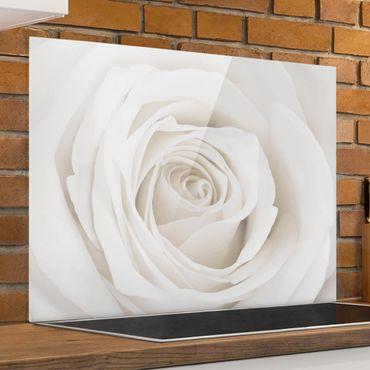 Spritzschutz Glas - Pretty White Rose - Quer 4:3