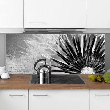 Spritzschutz Glas - Pusteblume Schwarz & Weiß - Panorama Quer