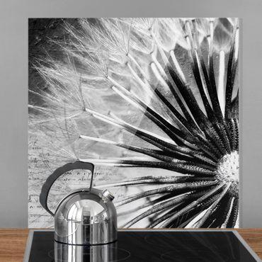 Spritzschutz Glas - Pusteblume Schwarz & Weiß - Quadrat 1:1