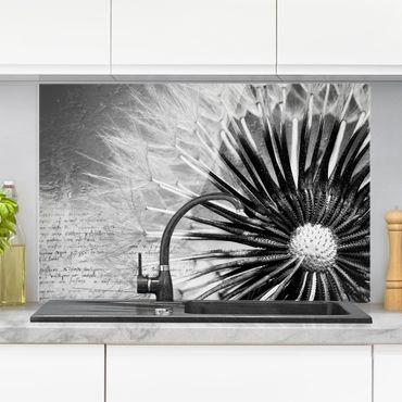 Spritzschutz Glas - Pusteblume Schwarz & Weiß - Quer 3:2