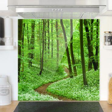 Spritzschutz Glas - Romantischer Waldweg - Quadrat 1:1