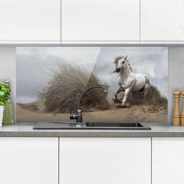Spritzschutz Glas - Weißes Pferd in den Dünen - Quer 2:1